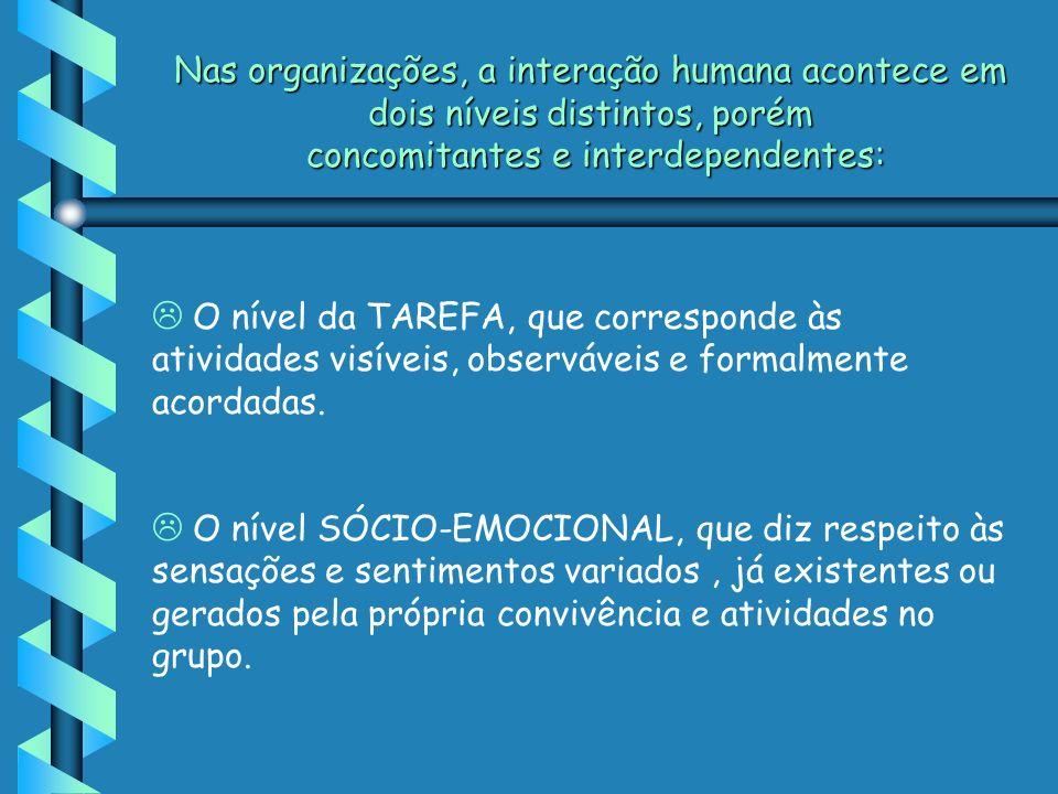 Nas organizações, a interação humana acontece em dois níveis distintos, porém concomitantes e interdependentes: