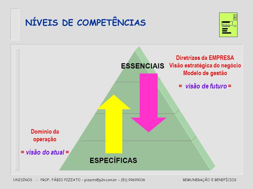 NÍVEIS DE COMPETÊNCIAS Visão estratégica do negócio
