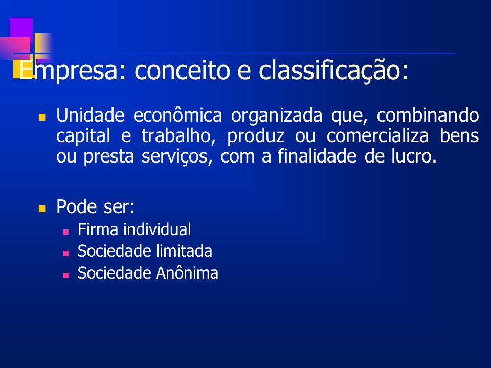 Empresa: conceito e classificação: