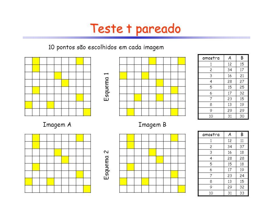 Teste t pareado 10 pontos são escolhidos em cada imagem Esquema 1