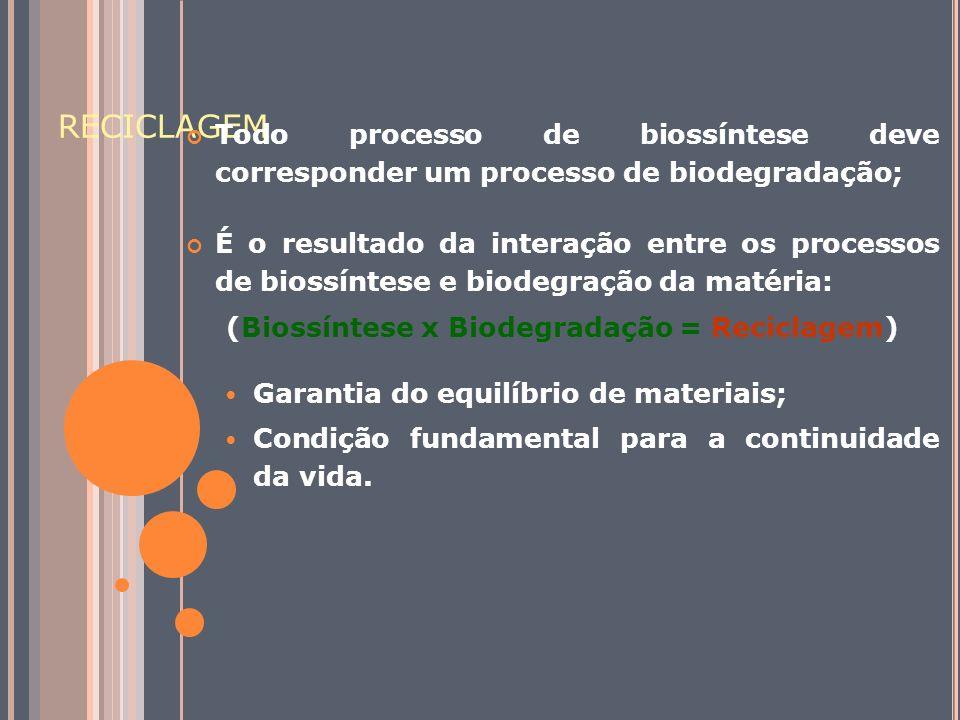(Biossíntese x Biodegradação = Reciclagem)