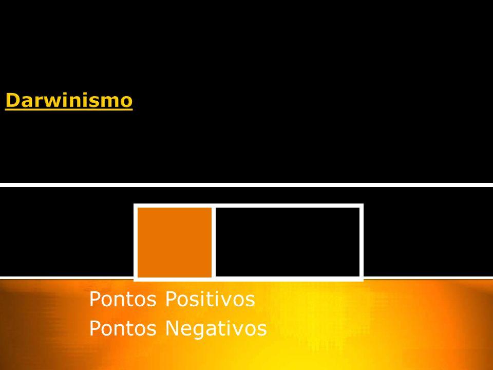 Pontos Positivos Pontos Negativos