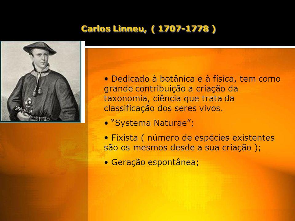 Carlos Linneu, ( 1707-1778 )