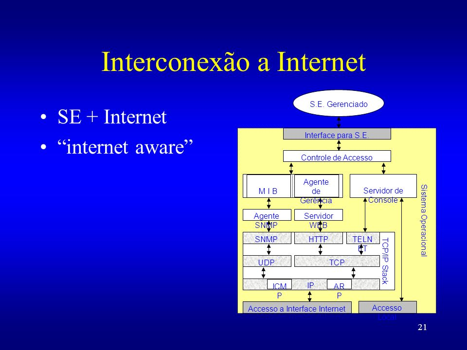 Interconexão a Internet