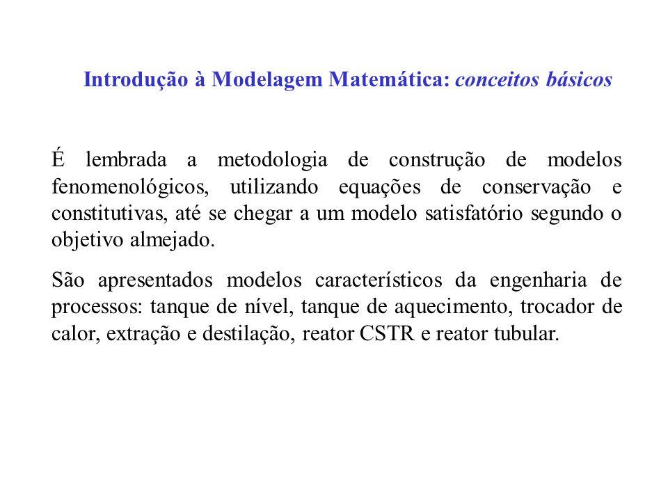 Introdução à Modelagem Matemática: conceitos básicos