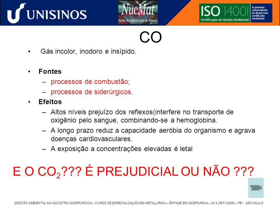CO E O CO2 É PREJUDICIAL OU NÃO