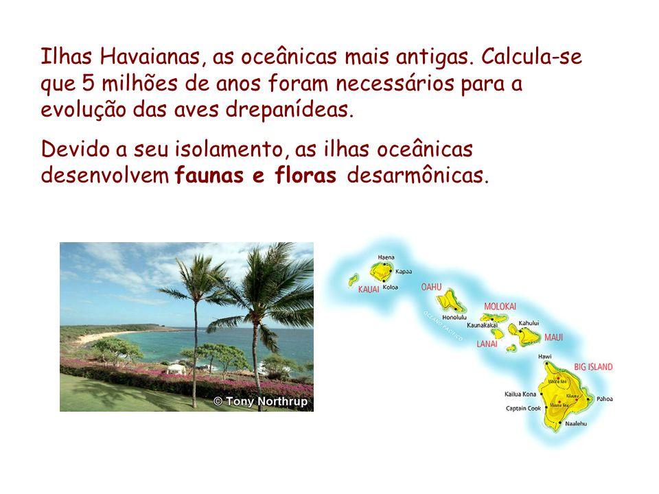 Ilhas Havaianas, as oceânicas mais antigas