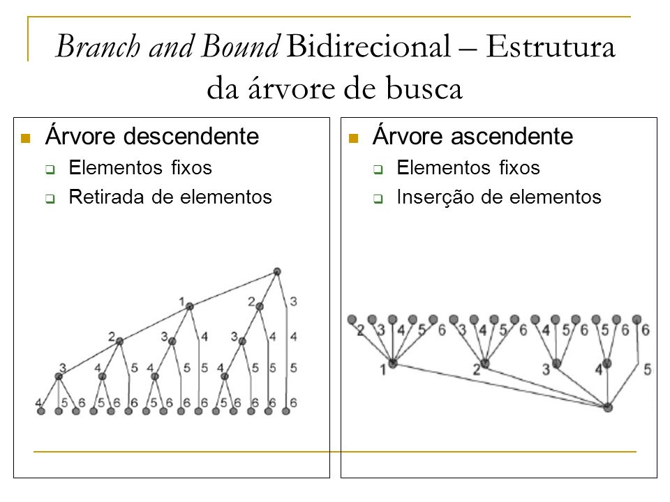 Branch and Bound Bidirecional – Estrutura da árvore de busca