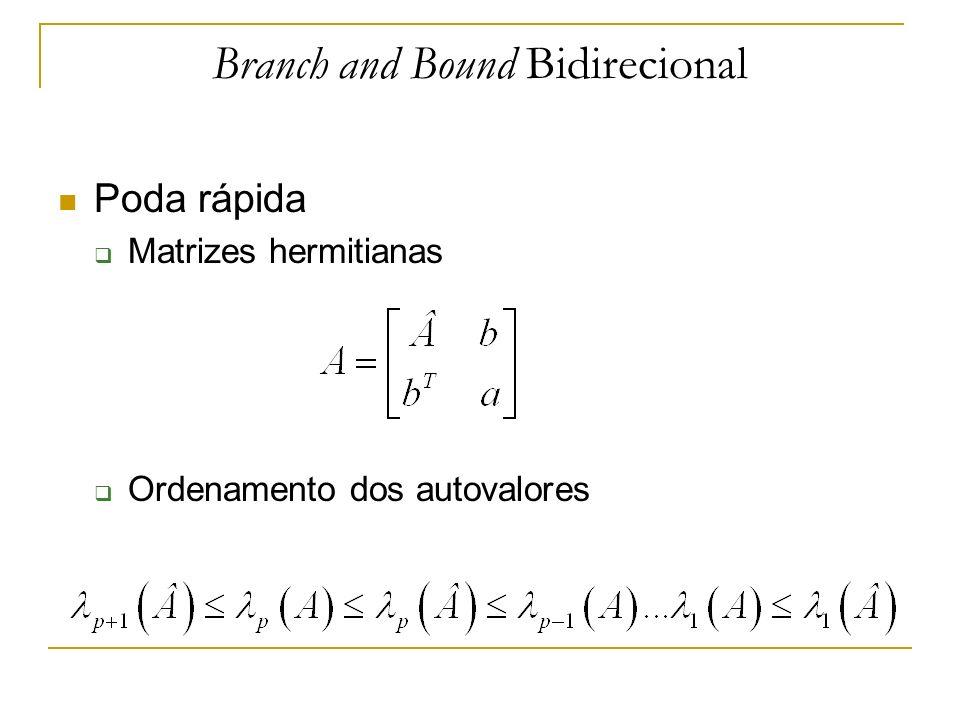 Branch and Bound Bidirecional