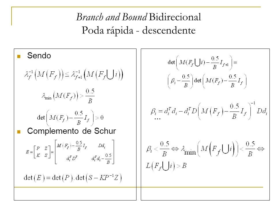 Branch and Bound Bidirecional Poda rápida - descendente