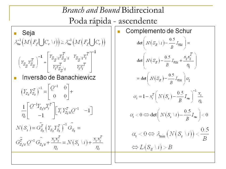 Branch and Bound Bidirecional Poda rápida - ascendente