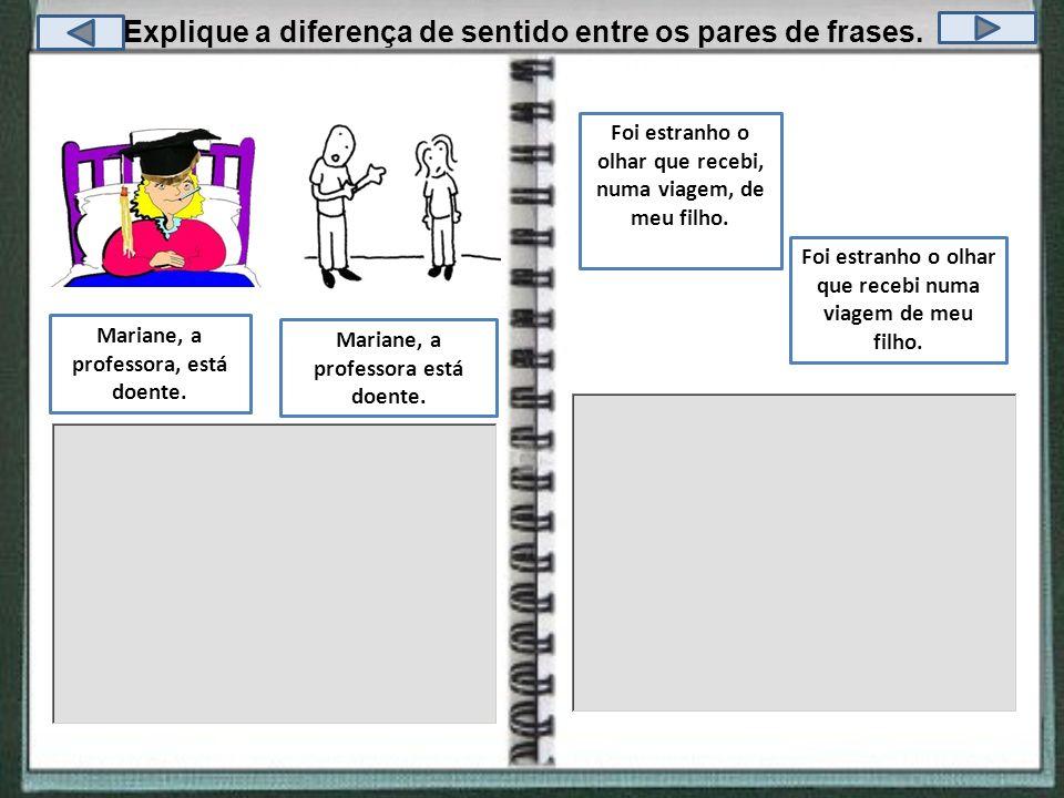 Explique a diferença de sentido entre os pares de frases.