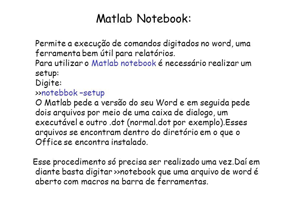 Matlab Notebook: Permite a execução de comandos digitados no word, uma ferramenta bem útil para relatórios.