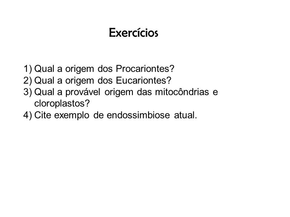 Exercícios Qual a origem dos Procariontes