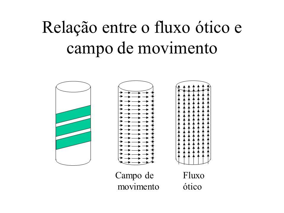 Relação entre o fluxo ótico e campo de movimento