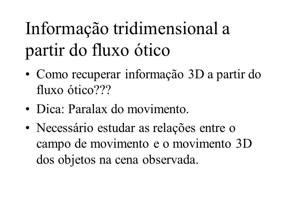 Informação tridimensional a partir do fluxo ótico