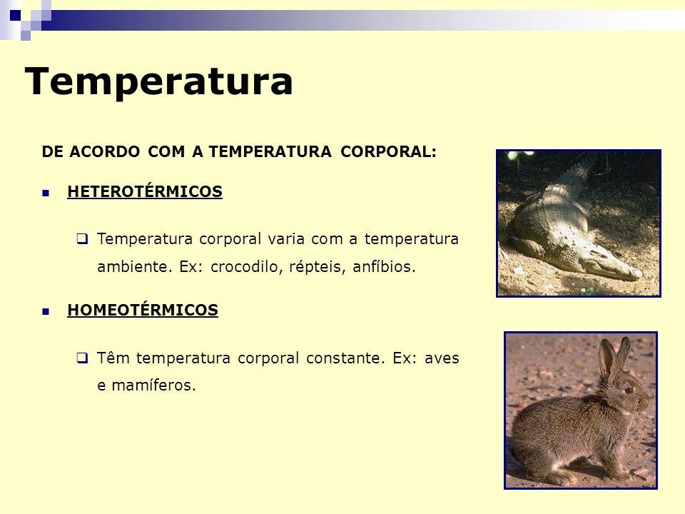 Temperatura DE ACORDO COM A TEMPERATURA CORPORAL: HETEROTÉRMICOS