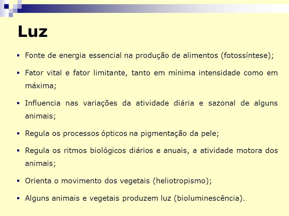 Luz Fonte de energia essencial na produção de alimentos (fotossíntese); Fator vital e fator limitante, tanto em mínima intensidade como em máxima;