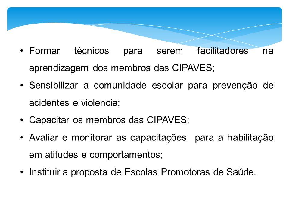 Formar técnicos para serem facilitadores na aprendizagem dos membros das CIPAVES;