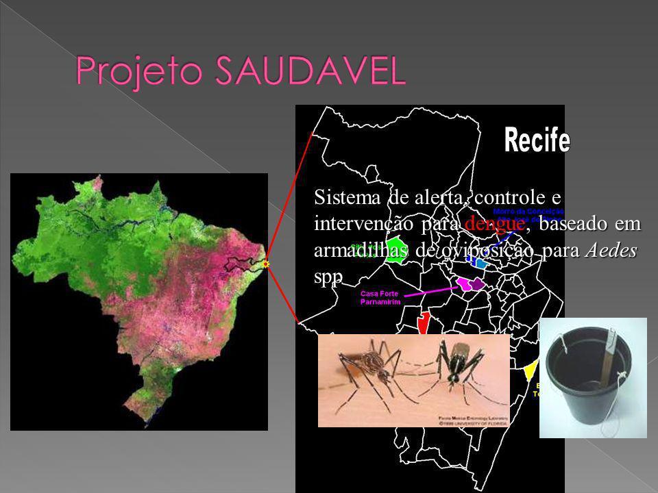 Projeto SAUDAVEL Recife.