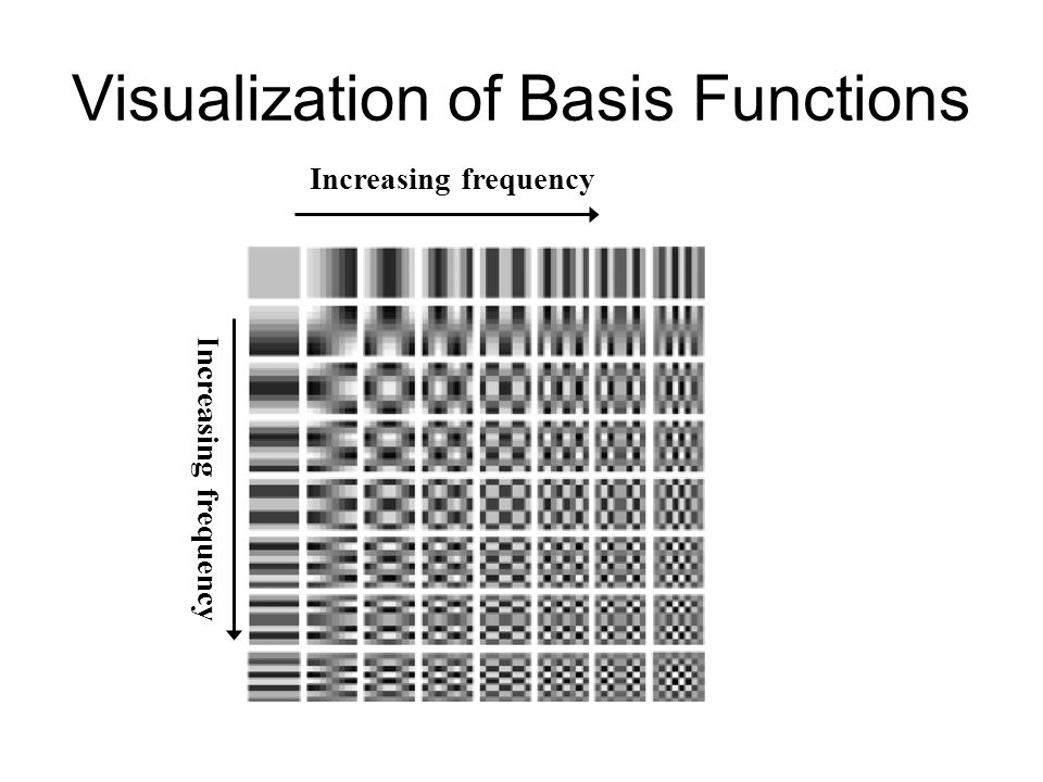 Visualization of Basis Functions
