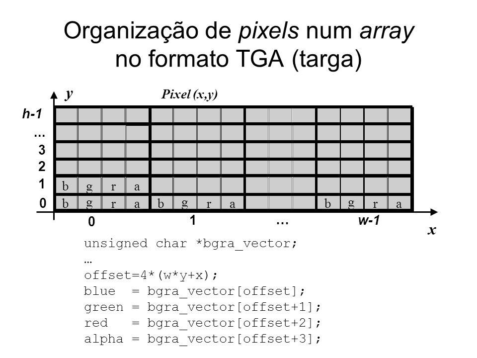 Organização de pixels num array no formato TGA (targa)