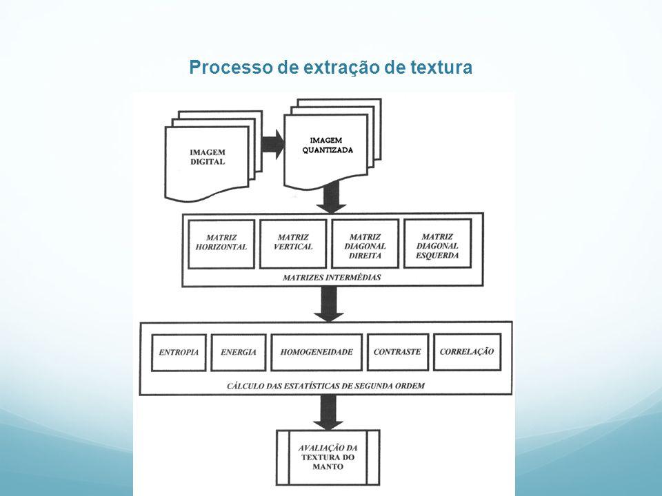 Processo de extração de textura