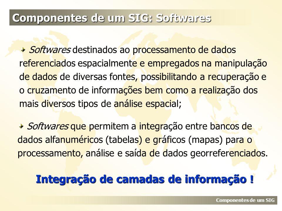 Componentes de um SIG: Softwares