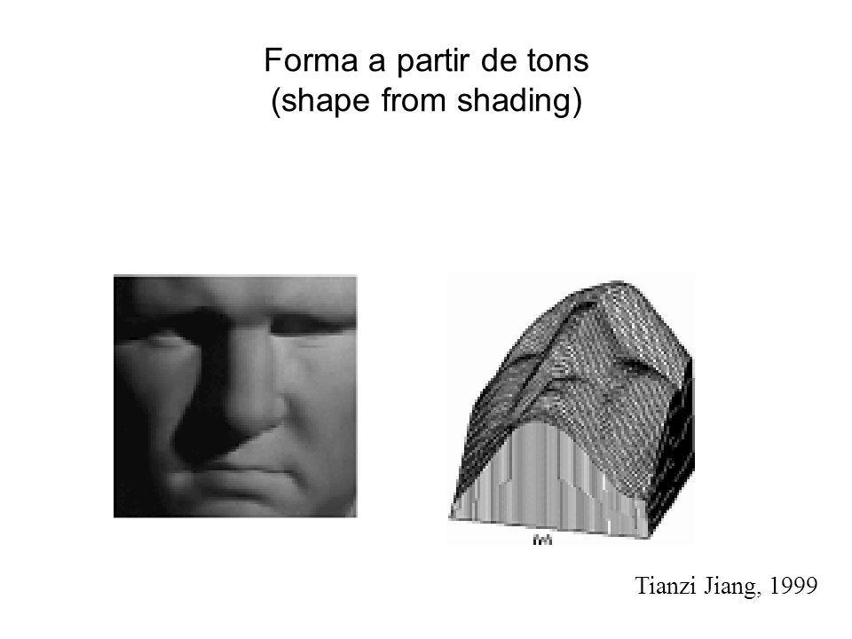 Forma a partir de tons (shape from shading)