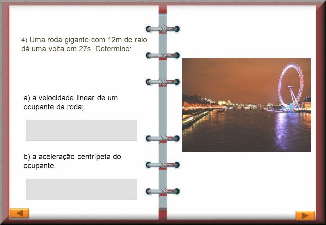 a) a velocidade linear de um ocupante da roda;