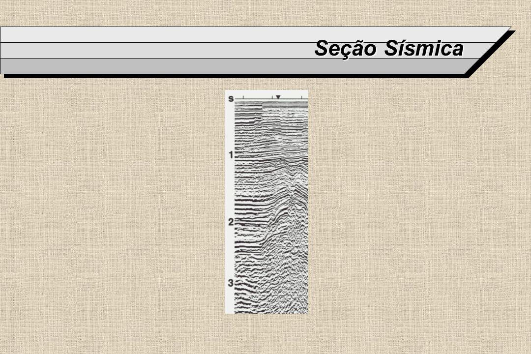 Seção Sísmica