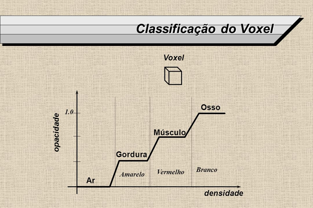 Classificação do Voxel
