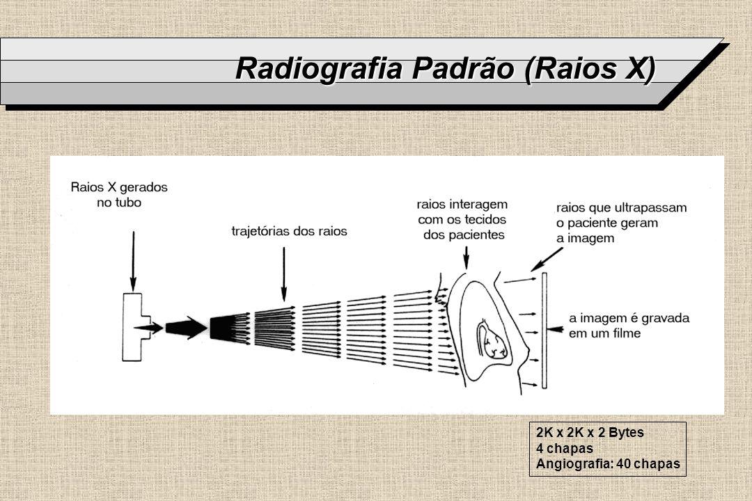 Radiografia Padrão (Raios X)