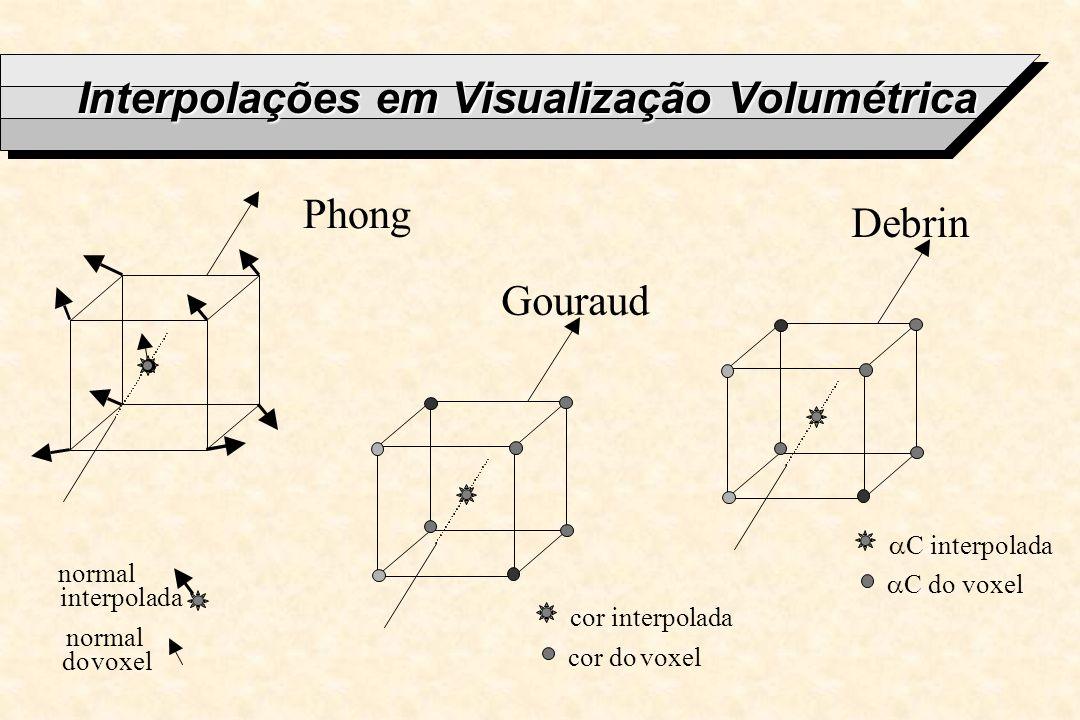 Interpolações em Visualização Volumétrica