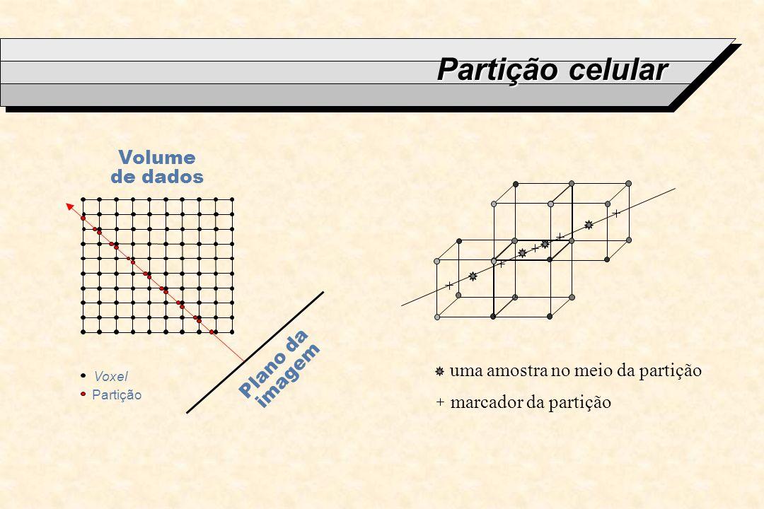 Partição celular Volume de dados Plano da imagem
