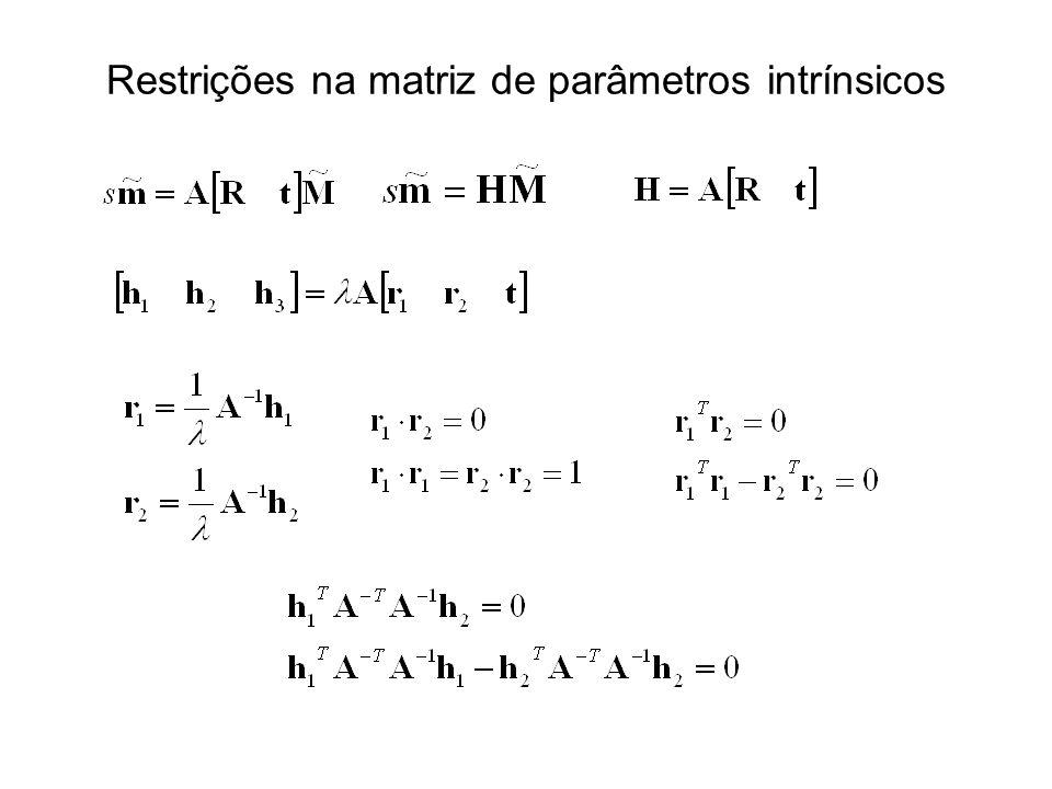 Restrições na matriz de parâmetros intrínsicos