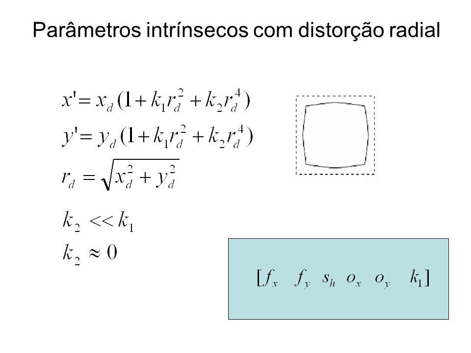 Parâmetros intrínsecos com distorção radial