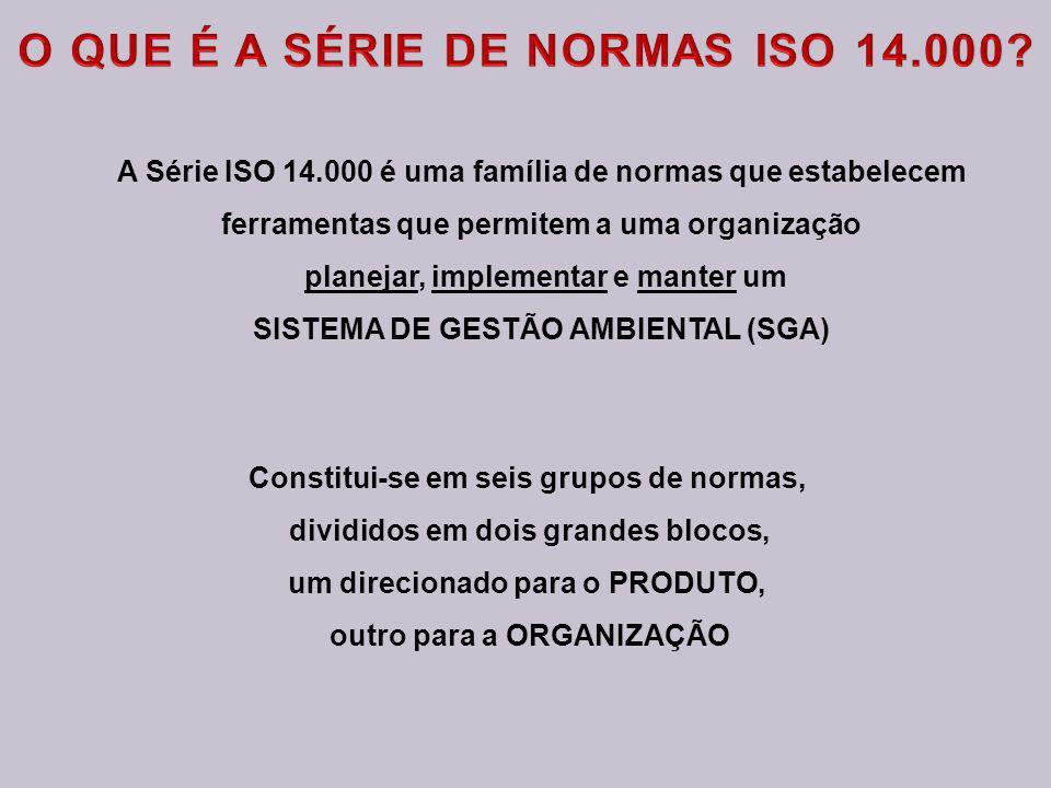 O QUE É A SÉRIE DE NORMAS ISO 14.000