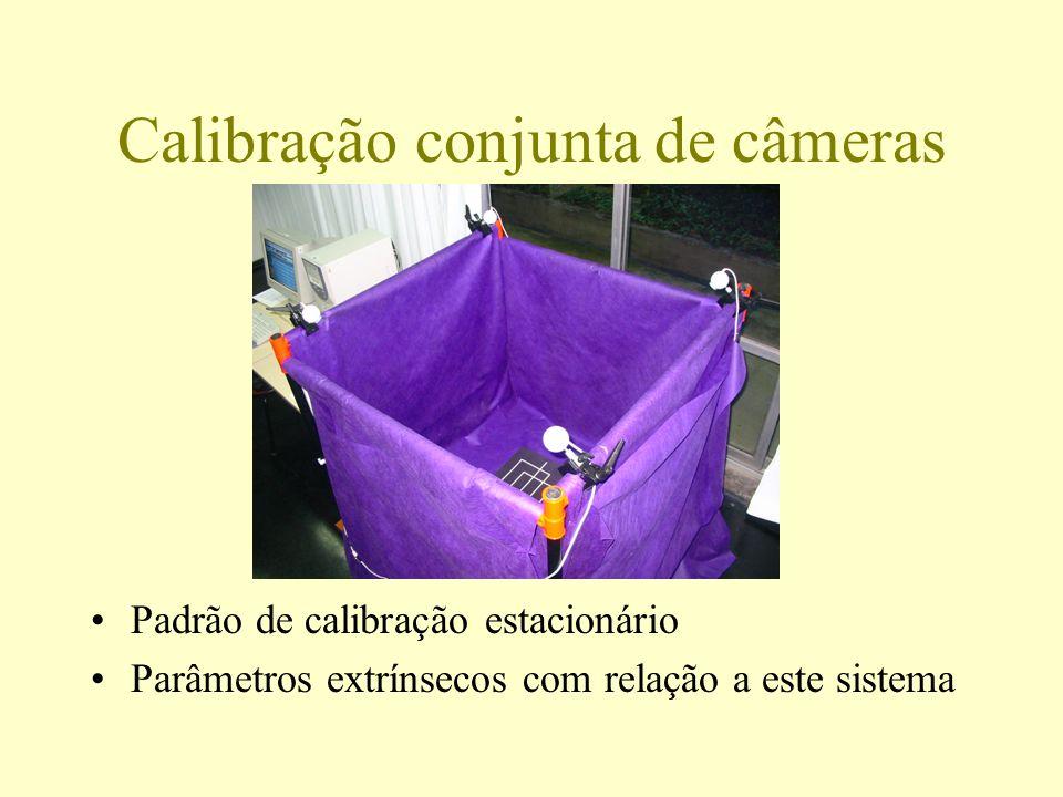 Calibração conjunta de câmeras