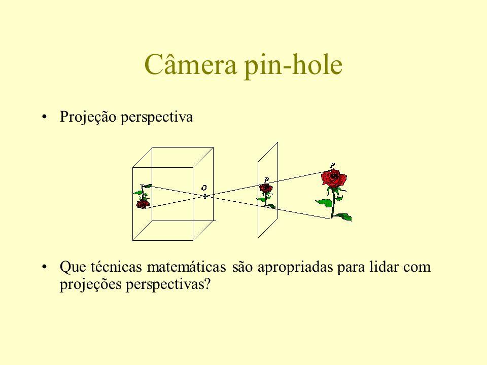 Câmera pin-hole Projeção perspectiva