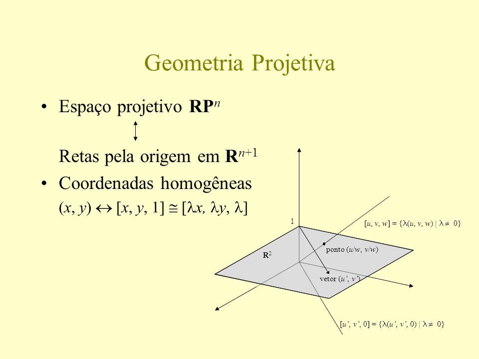 Geometria Projetiva Espaço projetivo RPn Retas pela origem em Rn+1