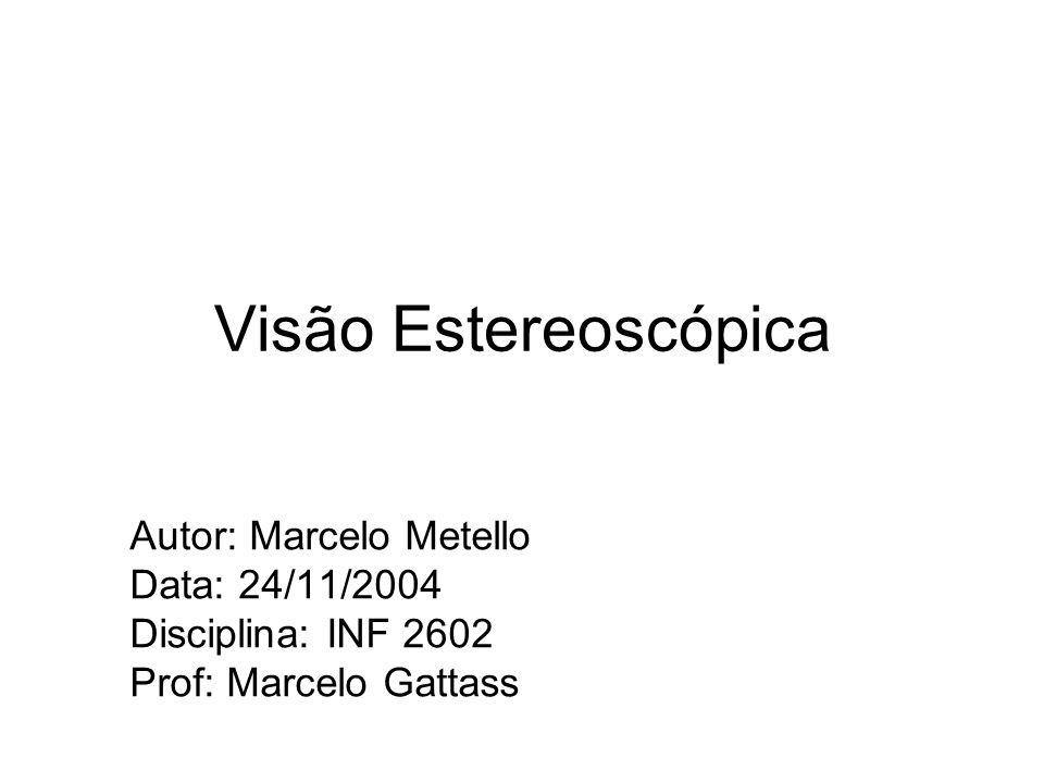 Visão Estereoscópica Autor: Marcelo Metello Data: 24/11/2004