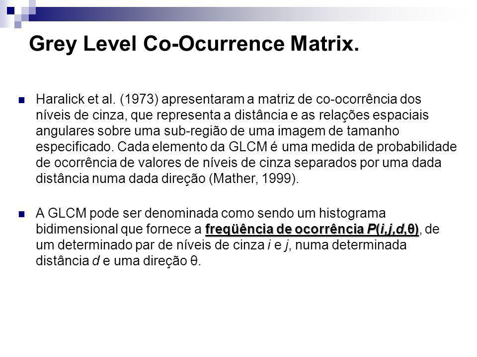 Grey Level Co-Ocurrence Matrix.