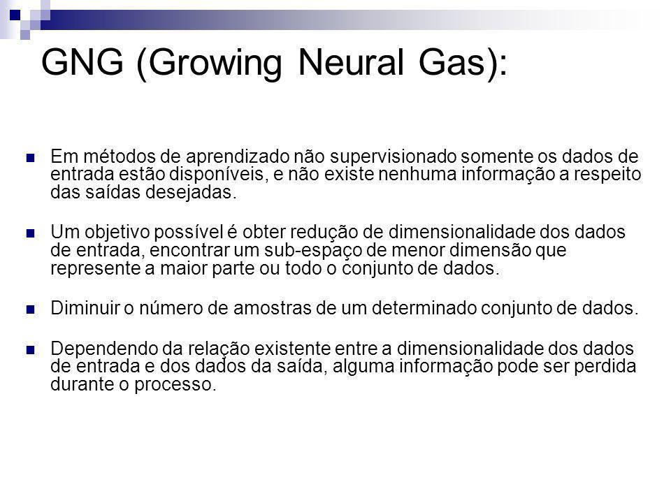 GNG (Growing Neural Gas):