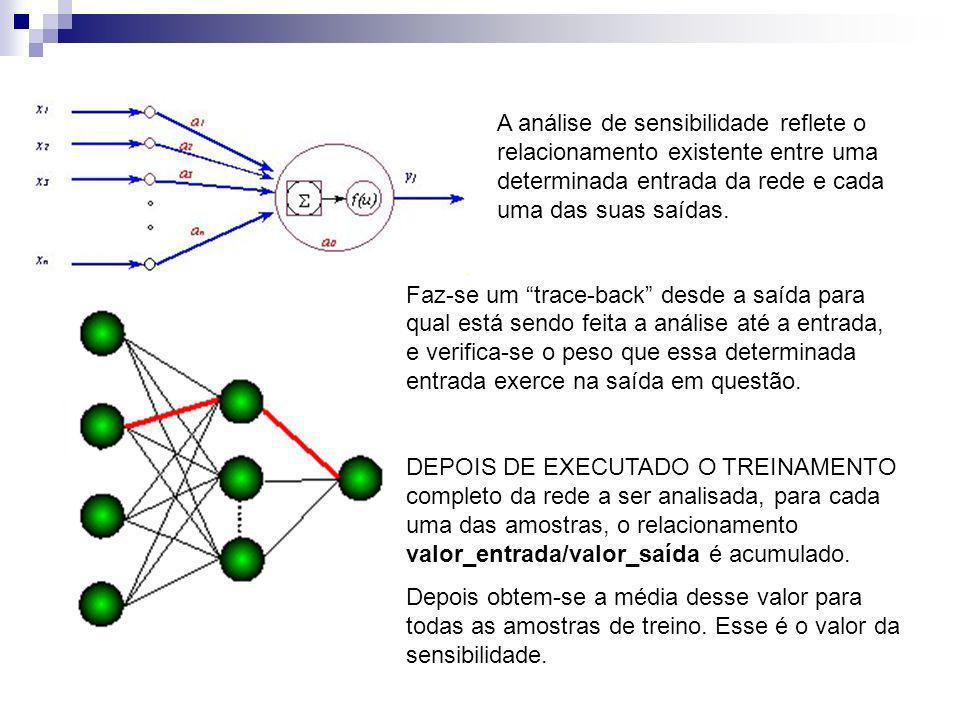 A análise de sensibilidade reflete o relacionamento existente entre uma determinada entrada da rede e cada uma das suas saídas.