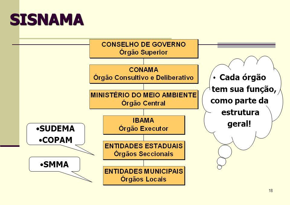 SISNAMA Cada órgão tem sua função, como parte da estrutura geral!