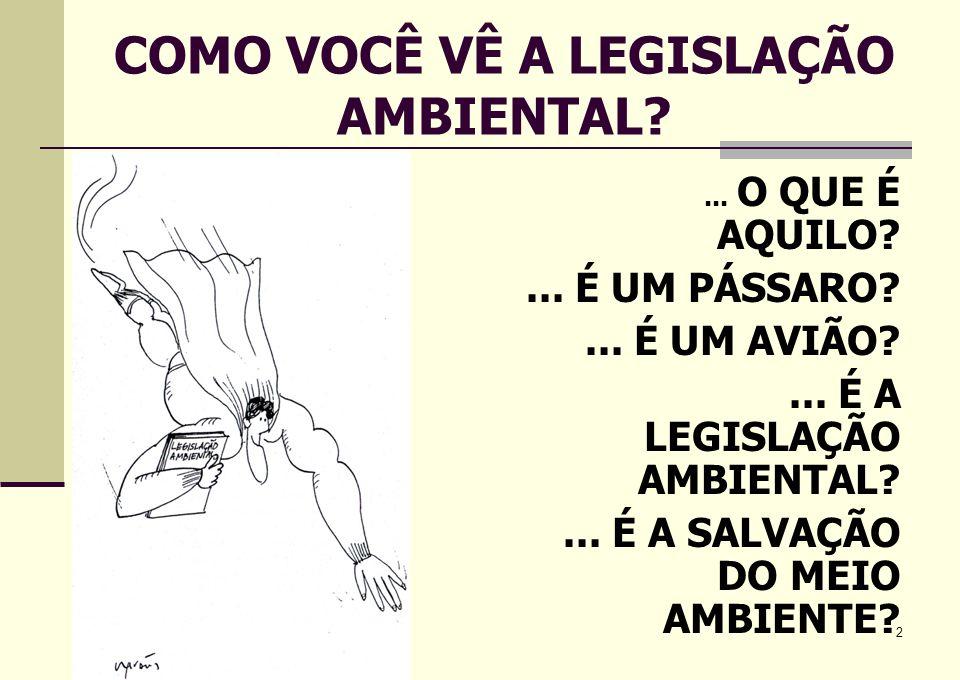 COMO VOCÊ VÊ A LEGISLAÇÃO AMBIENTAL