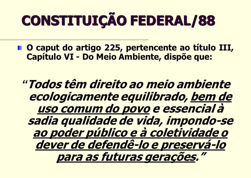 CONSTITUIÇÃO FEDERAL/88