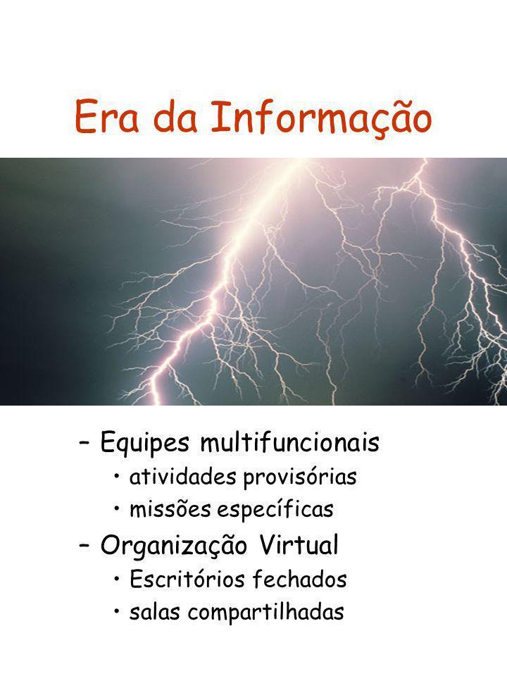 Era da Informação Equipes multifuncionais Organização Virtual