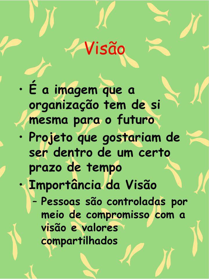 Visão É a imagem que a organização tem de si mesma para o futuro